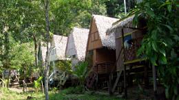 Impressionen 23-Tage-Amazonasreise Bild 2 (260 × 146)